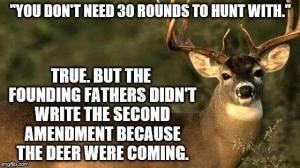 Guns founding fathers